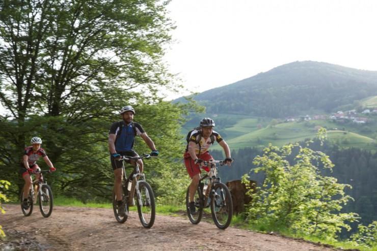 Menschen auf Mountainbikes