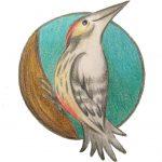 Logo-Specht