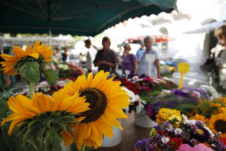 Sonnenblumen an einem Markstand