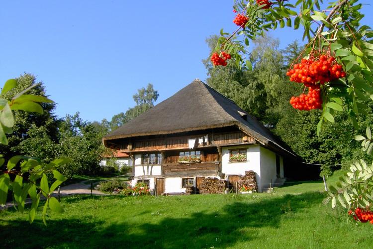 Bauernhausmuseum Schneiderhof in Steinen