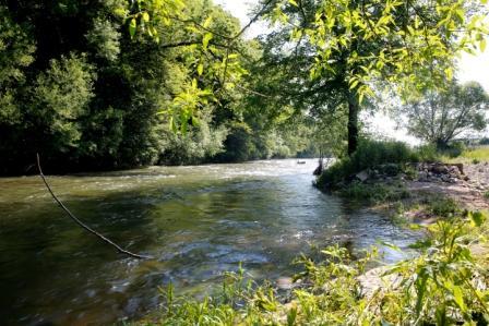 Fluss Wiese bei Maulburg