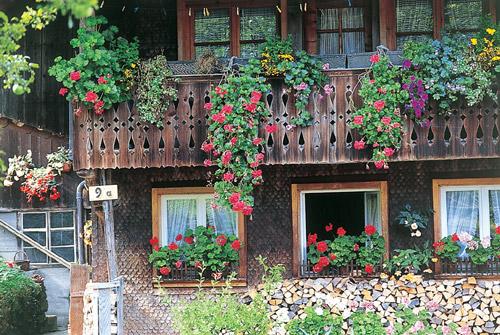 Altes Bauernhaus mit bunten Blumen an den Fenstern
