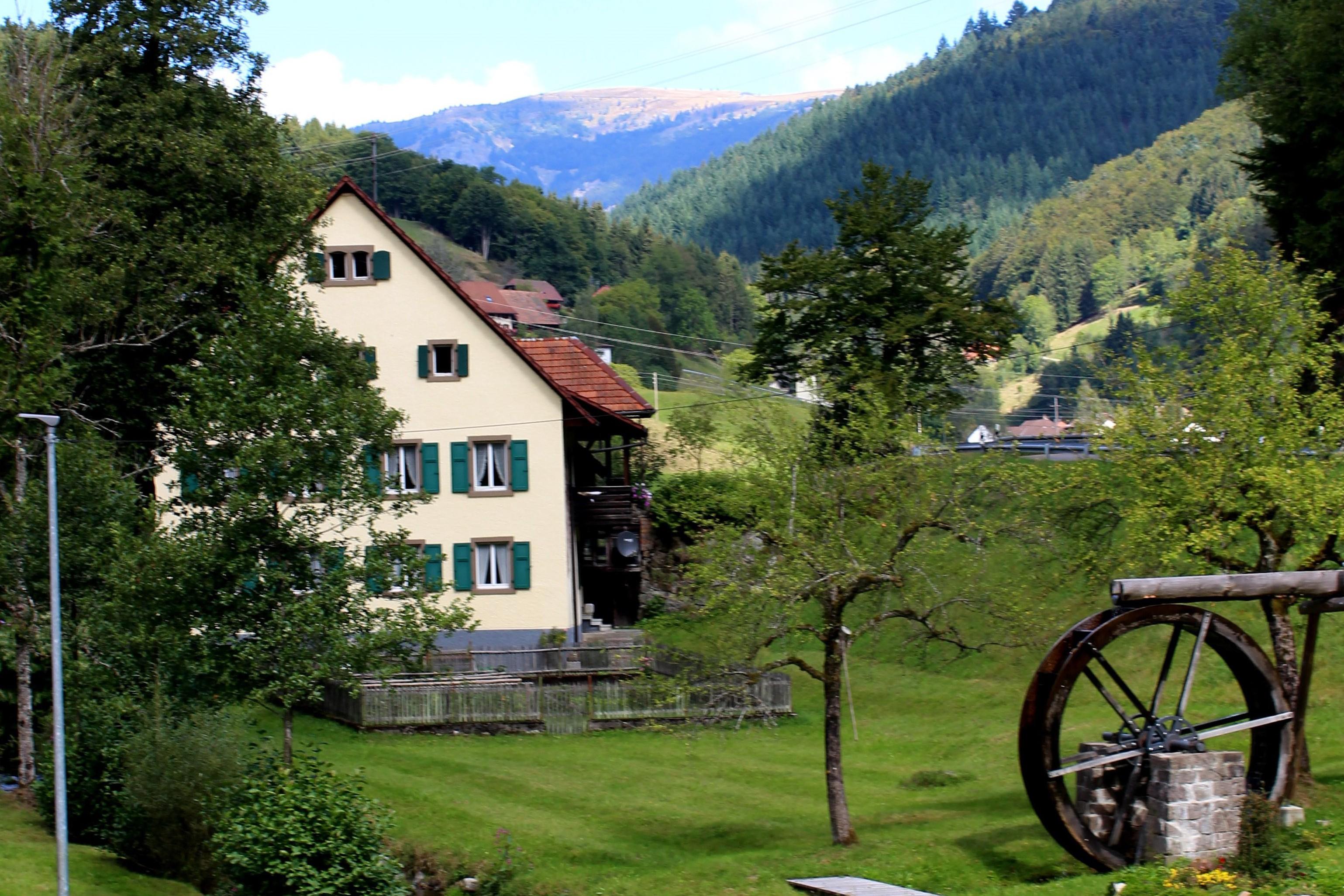 Kleines Wiesental-Bürchau mit Mühlrad