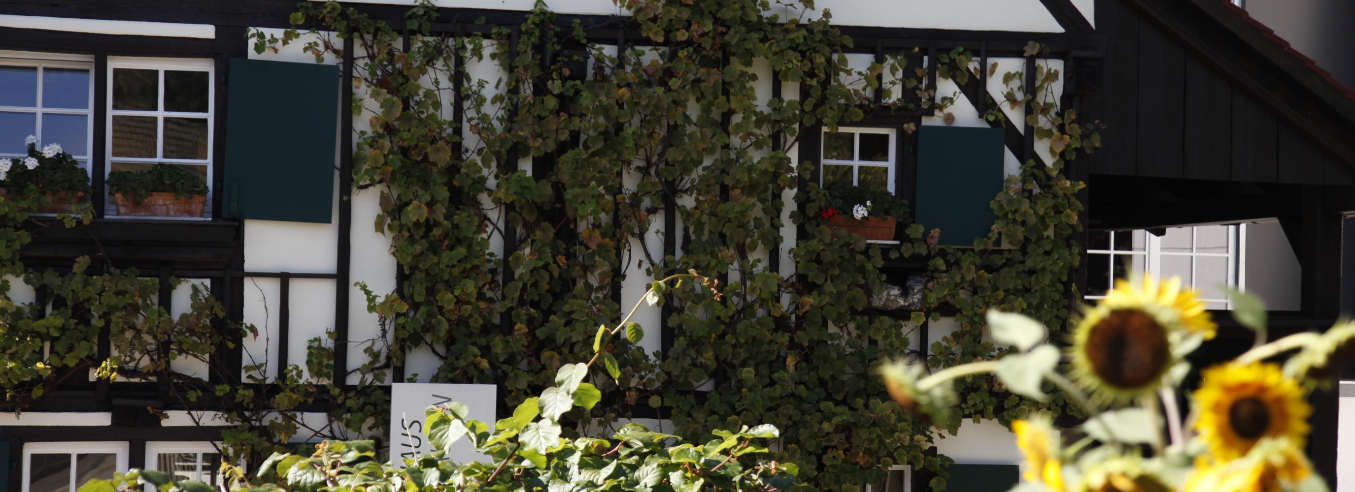 Hebelhaus in Hausen im Wiesental mit Sonnenblumen