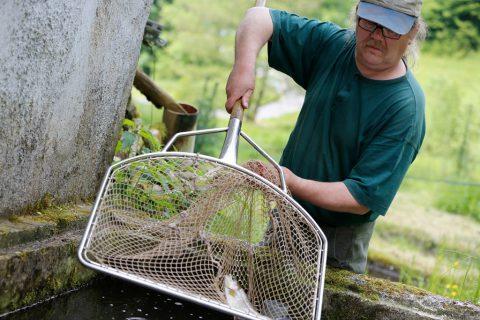 Christoph Ebi beim Forellen fangen