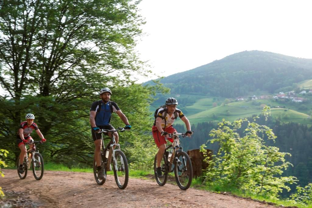 Mountainbiker und Mountainbikerinnen in Aktion