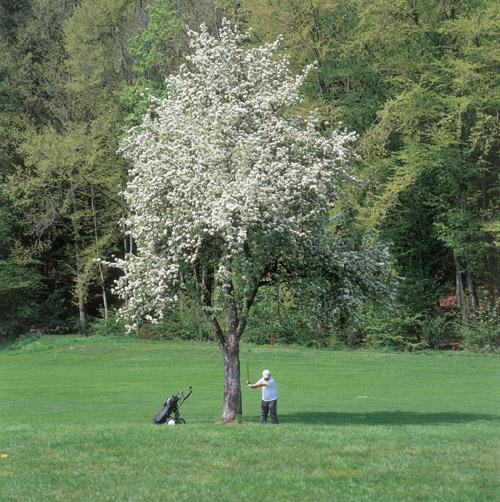 Golf in Schopfheim Fahrnau