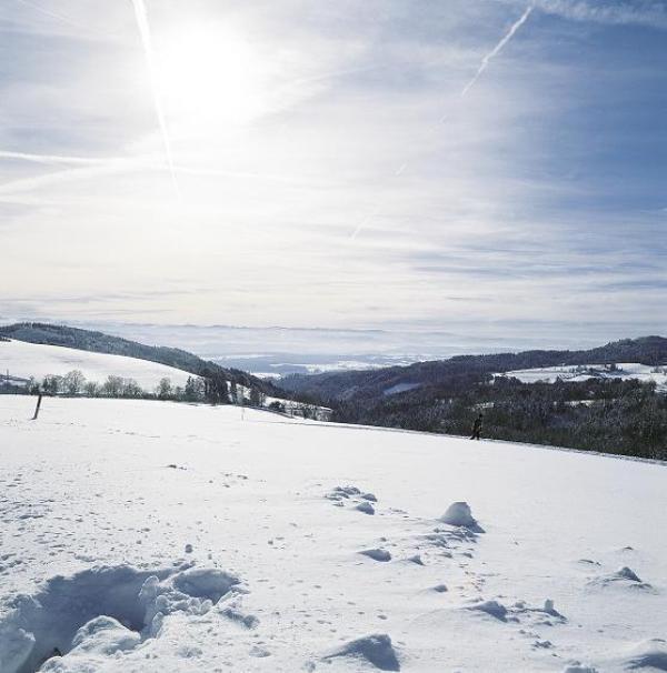 Winterlandschaft mit Schnee und Loipenspur