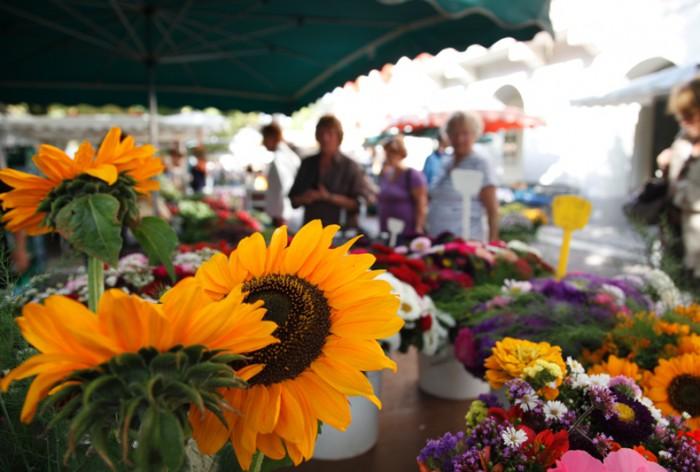 Sonnenblumen an einem Marktstand
